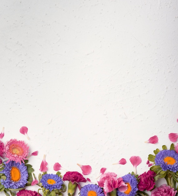 Disposizione di fiori colorati e copia spazio Foto Gratuite