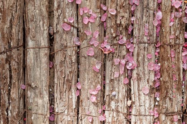 Disposizione di vista superiore con i fiori su fondo di legno Foto Gratuite