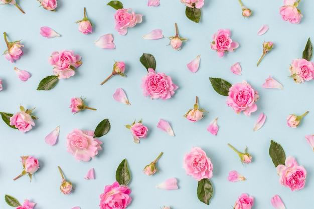 Disposizione graziosa del primo piano delle rose Foto Gratuite