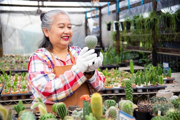 Donna anziana che esamina integrità dell'albero di cactus Foto Gratuite
