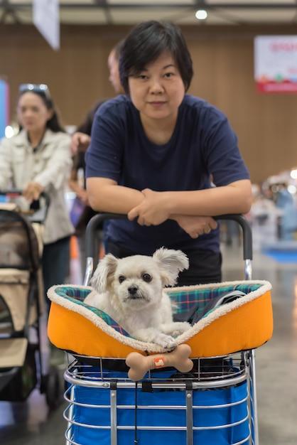 Donna asiatica e il cane in sala espositiva o expo Foto Premium