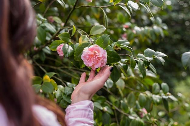 Donna che tiene floricultura rosa sul ramoscello verde Foto Gratuite
