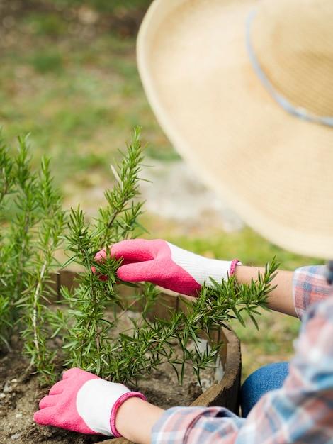 Donna con cappello prendersi cura del suo giardino   Foto ...