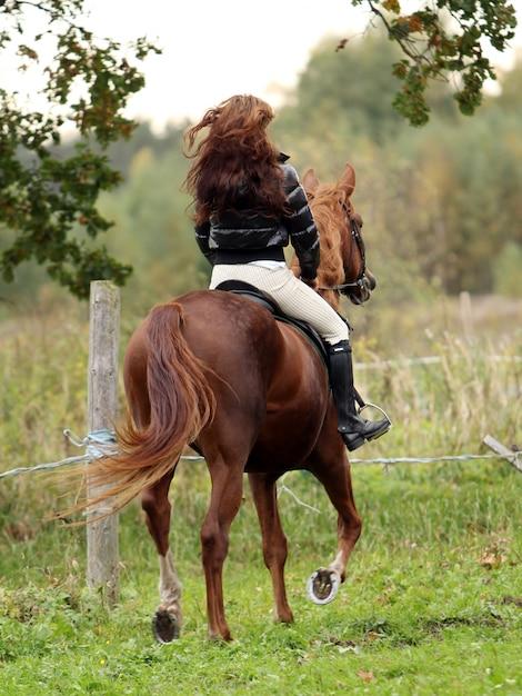 Donna e il suo cavallo marrone Foto Gratuite