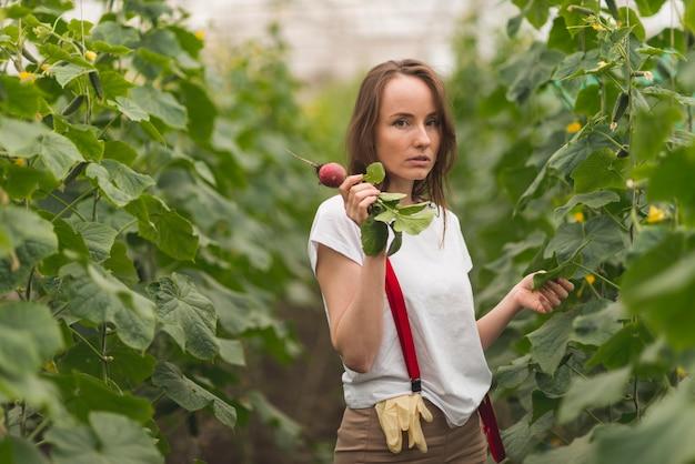 Donna prendersi cura delle piante in una serra Foto Gratuite