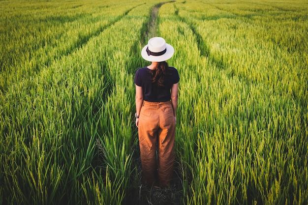 Donne in piedi da sole nelle risaie e nella luce della sera Foto Premium