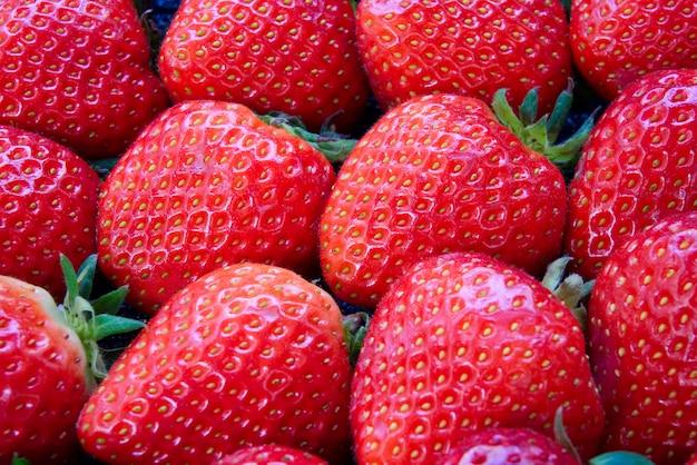 Dozzina di fragole rosse fresche Foto Premium