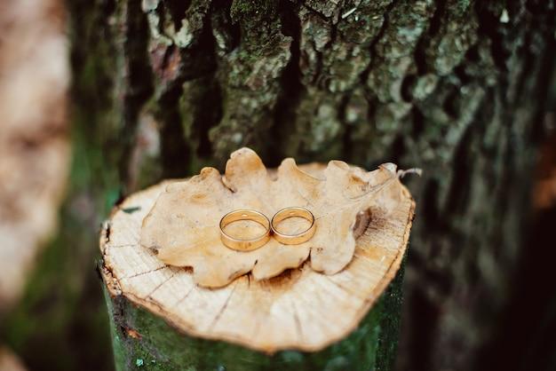 Due anelli di nozze d'oro sul ceppo di quercia incrinata con una foglia secca Foto Premium