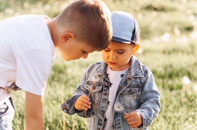 Due fratelli nella natura Foto Premium
