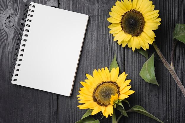 Due girasoli gialli con quaderno a spirale vuota sul tavolo di legno Foto Gratuite