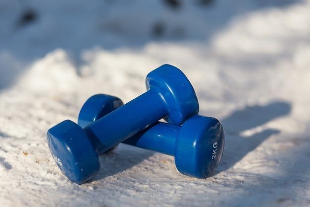 Due manubri si trovano sulla neve Foto Premium