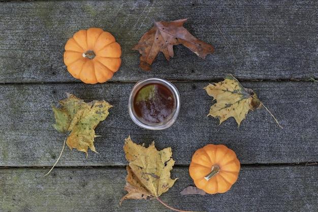 Due zucche e foglie che circondano la tazza Foto Gratuite