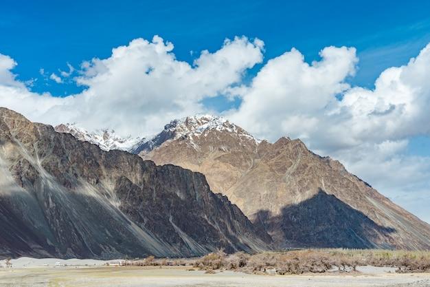 Duna di sabbia del dessert con cielo blu nuvoloso, valle di nubra in leh ladakh, india del nord Foto Premium