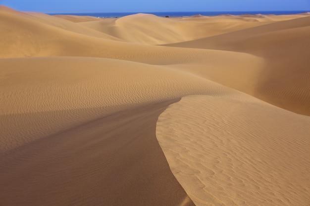Dune di sabbia del deserto a maspalomas gran canaria Foto Premium