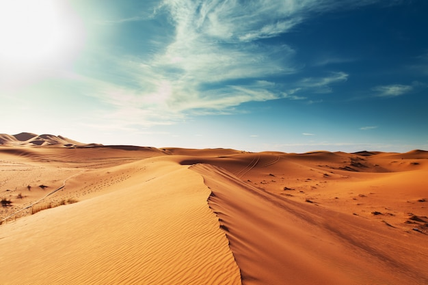 Dune di sabbia del deserto del sahara. Foto Premium
