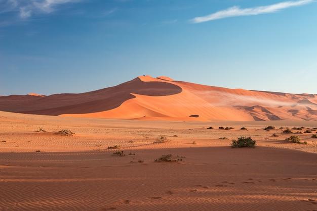 Dune di sabbia nel deserto del namib all'alba, roadtrip nel meraviglioso namib naukluft national park, destinazione del viaggio. Foto Premium