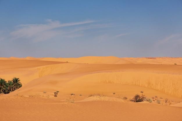 Dune nel deserto del sahara, nel cuore dell'africa Foto Premium