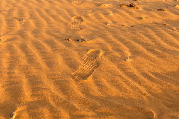 Dune ondeggiano nel deserto del sahara Foto Premium