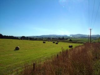 Dunedin paesaggio Foto Gratuite