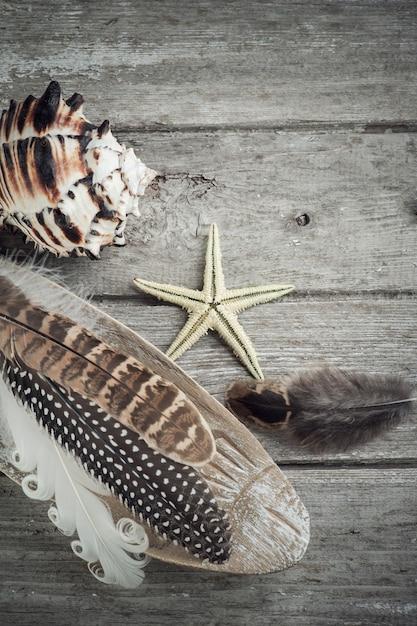 Elementi marini su vecchio fondo di legno Foto Premium