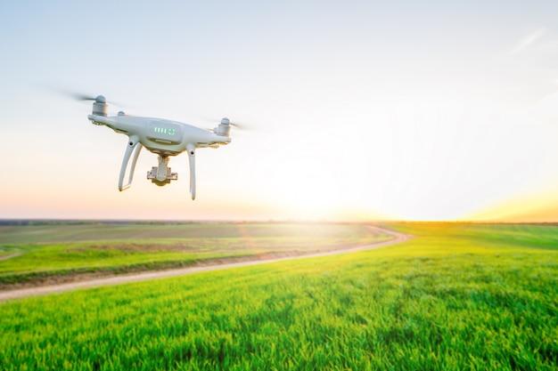 Elicottero del quadrato del drone sul campo di grano verde Foto Premium