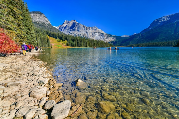 Emerald lake, yoho national park in canada Foto Premium