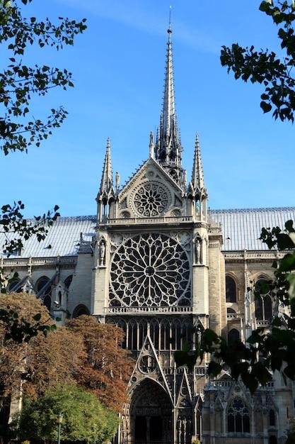 Entrata laterale e caratteristici rosoni della famosa cattedrale di notre dame a parigi Foto Gratuite