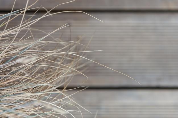 Erba secca sullo sfondo del pavimento di tavole di legno. Foto Premium