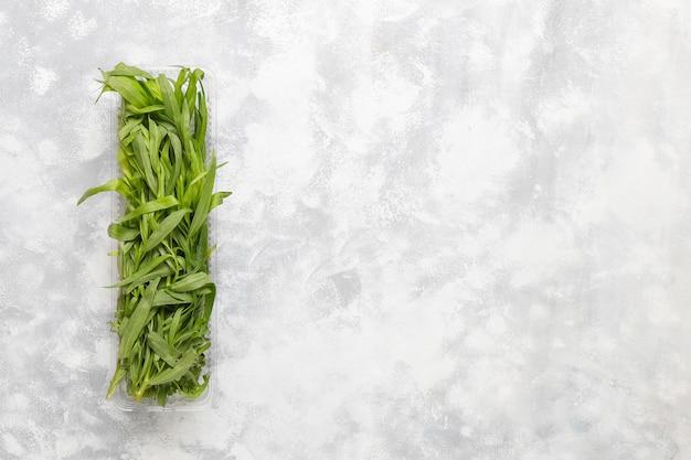 Erba verde fresca del dragoncello in scatola di plastica su calcestruzzo grigio Foto Gratuite