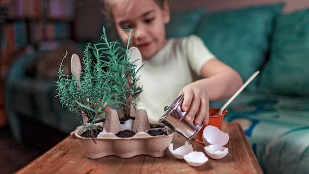 Erbe crescenti della cucina della scolara graziosa Foto Premium