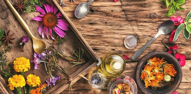 Erbe e piante medicinali a base di erbe Foto Premium