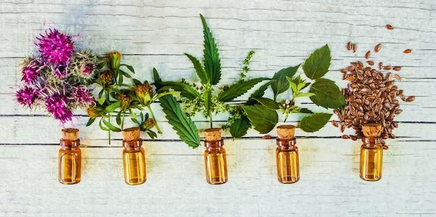 Erbe medicinali. messa a fuoco selettiva estratto di piante naturali. Foto Premium