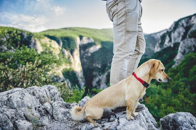Escursionista e il suo cane in piedi sulla cima della montagna Foto Premium