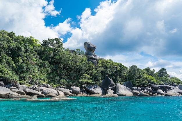 Estate paesaggio marino natura tropicale isola Foto Gratuite