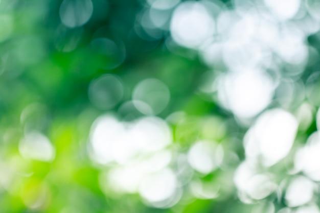 Estratto vago verde naturale per estate Foto Premium