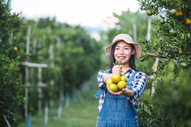 Farmer orange lady, i giardinieri stanno raccogliendo l'arancia, orange garden. Foto Premium