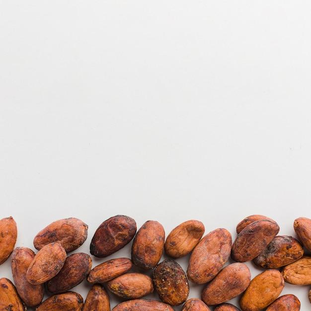 Fave di cacao con spazio di copia Foto Gratuite
