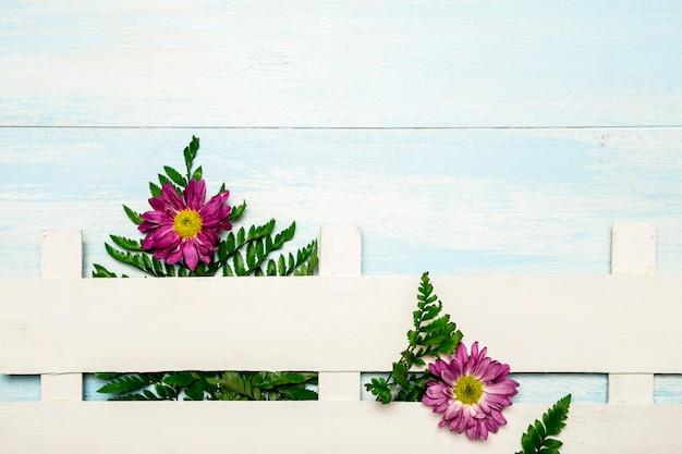 Felci e fiori dietro la rete fissa bianca Foto Gratuite