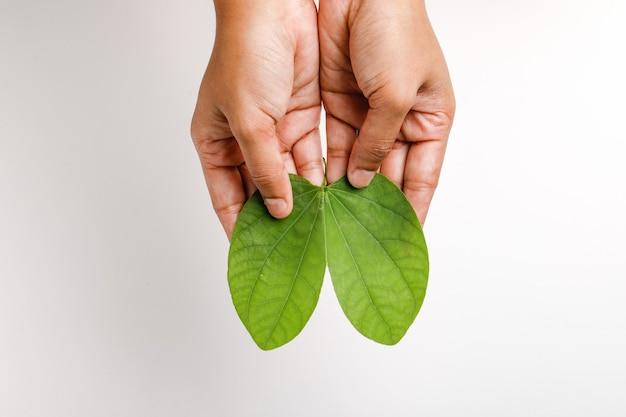 Felice dussehra con foglia verde a portata di mano Foto Premium