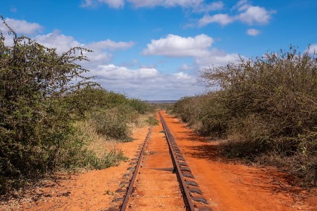 Ferrovia che passa attraverso gli alberi sotto il bello cielo blu in tsavo ad ovest, colline di taita, kenya Foto Gratuite