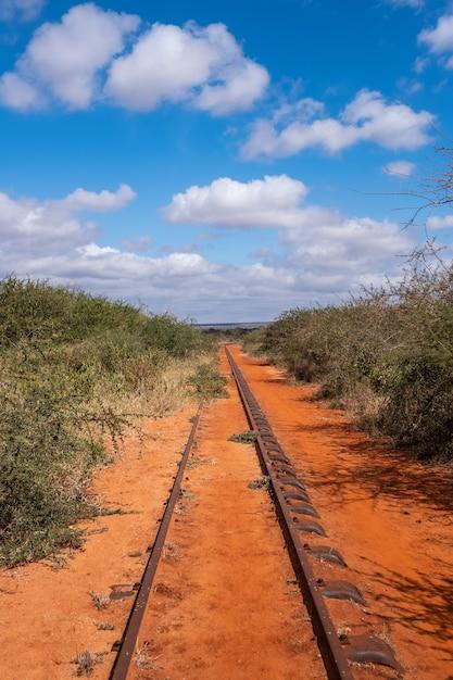 Ferrovia circondata dagli alberi sotto il cielo blu in tsavo ad ovest, colline di taita, kenya Foto Gratuite