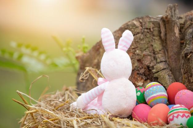 Festival delle uova di pasqua. Foto Gratuite