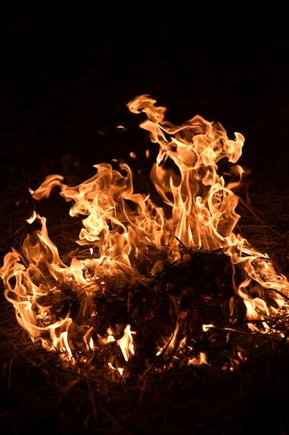 Fiamme del fuoco su sfondo nero Foto Premium