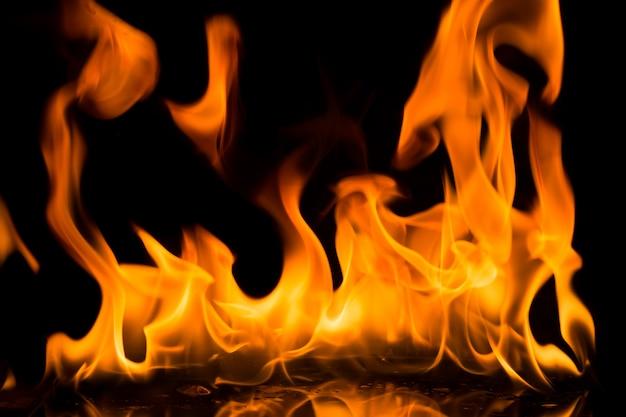 Fiamme del fuoco su sfondo nero. Foto Premium