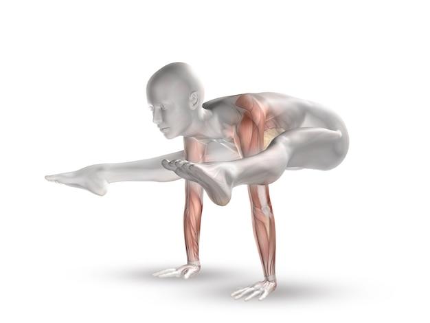 Figura femminile 3d con mappa muscolare in posizione yoga Foto Gratuite