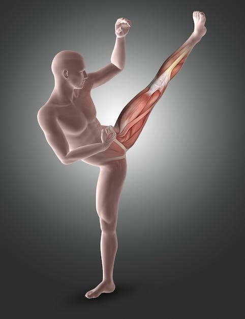 Figura maschio 3d nella posa di kick boxing con i muscoli delle gambe evidenziati Foto Gratuite
