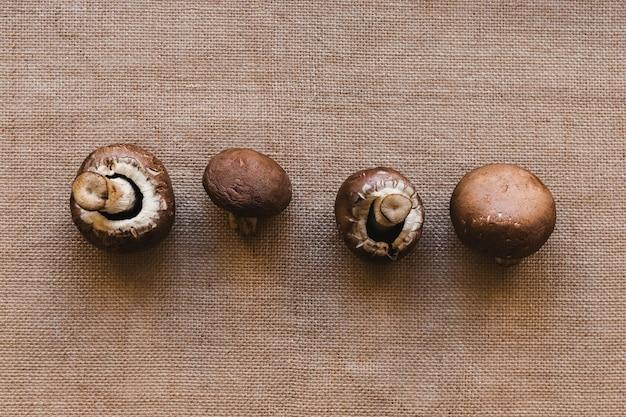 Fila di funghi freschi Foto Gratuite
