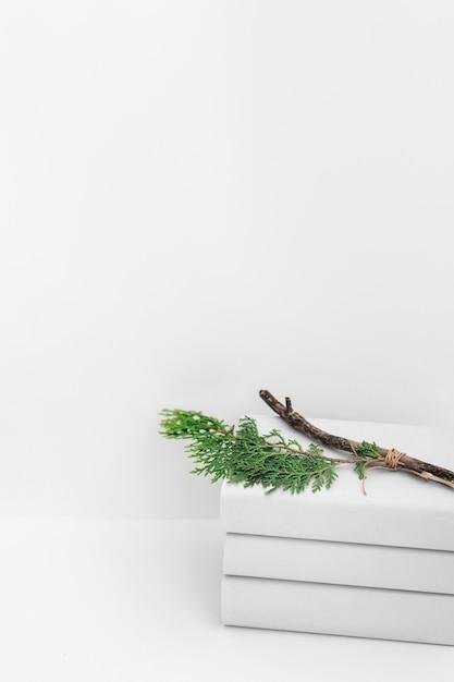 Filiale del cedro impilata dei libri contro fondo bianco Foto Gratuite
