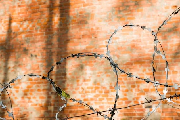Filo spinato su sfondo di mattoni rossi. muro di mattoni rossi con filo spinato metallico Foto Premium