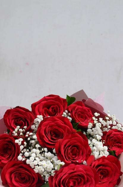 Fiore Della Rosa Rossa Su Fondo Bianco Scaricare Foto Premium